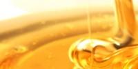 Μέλι από τον Ταύγετο